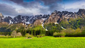 Spring landscape in the Swiss Alps. — Stock Photo