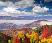 Autumn morning in the mountains. — Stock Photo