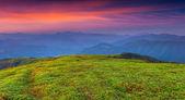 Amanecer de verano colorido en las montañas — Foto de Stock