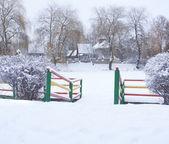 Snow-covered landscape in the park — Stock Photo