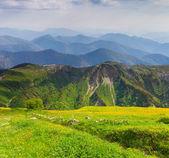 Kafkasya dağlarda yaz peyzaj. — Stok fotoğraf