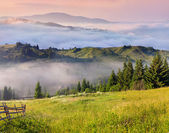Summer landscape in mountains. — Stock Photo