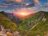 Summer landscape in the mountains. — Stock fotografie