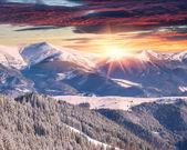 Winter alpine sunrise in the mountains — Stock Photo