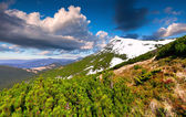 Spring landscape in mountains — Stock Photo