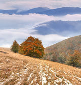 First snow in the mountains — Stock Photo