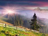 Lente landschap in de bergen — Stockfoto