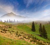 Foggy mountains. — Stock Photo