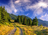 Summer landscape in the mountains — Stock Photo