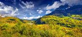Panorama of the alpine meadows. — Stok fotoğraf