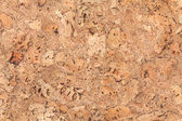 Large corkboard texture or background — Stock Photo