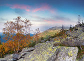 Colorful autumn landscape in the mountains. — Stock Photo