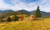 Autumn landscape in the Carpathian mountains — Stock Photo