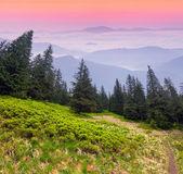 Misty landscape in the Carpathian mountains. — Stock Photo