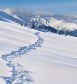 Trail in the snow-covered  mountains — Stock Photo