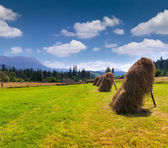 Hay in a village in the mountains — Stok fotoğraf