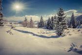 Invierno en el pueblo de montaña — Foto de Stock