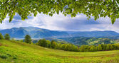 Mountains with fresh green leaves — ストック写真