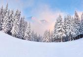 Vintern soluppgång i bergen — Stockfoto