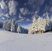 Winterlandschaft in den bergen — Stockfoto