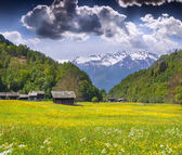Alpine meadows near the village of Bondo — Stock Photo