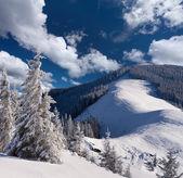 Zima v horách — Stock fotografie