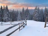 Winter landscape in Carpathian mountains — Stock Photo
