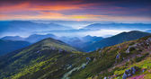 Summer panorama of the mountains. — Stok fotoğraf