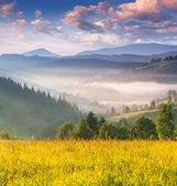 летом восход солнца в горах — Стоковое фото