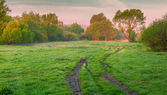 Morning panorama of the spring meadow — 图库照片