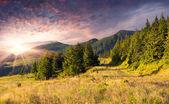 Höstlandskap i bergen — Stockfoto