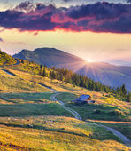 Summer sunrise in the mountains — Stock Photo