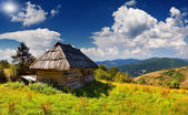 Summer landscape in the mountains village — Stock Photo