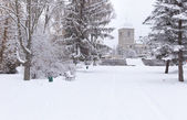 Snow-covered landscape in the city park. — Stock Photo