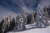 Night scenery in winter mountains — Zdjęcie stockowe