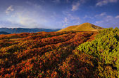 Autumn landscape in the mountains — Stock Photo