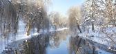 Winter in the city park — Stockfoto