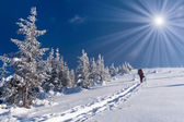 Winter adventure in the Carpathian mountains — Stock Photo