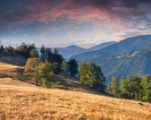 Autumn landscape in the mountains. — Stock Photo