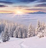 Sonnenaufgang in den bergen. — Stockfoto