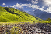 Bergwiesen am fuße des tetnuldi-gletschers — Stockfoto