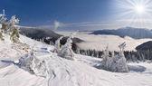 Zimowy krajobraz w Karpatach — Zdjęcie stockowe