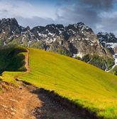 Sommerlandschaft in den bergen. — Stockfoto
