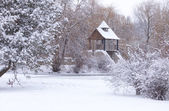 Snow-covered landscape in  park — Stock Photo