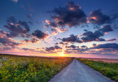 Summer sunrise in the countryside with road — Stock Photo