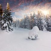 Zimowy krajobraz w górach. — Zdjęcie stockowe