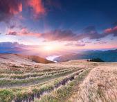 Kolorowy krajobraz jesień w górach. — Zdjęcie stockowe