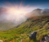 Krajobraz lato w górach — Zdjęcie stockowe