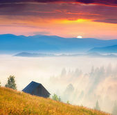 туманный пейзаж с старый сарай в горах — Стоковое фото