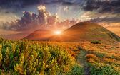 Bunte herbstliche landschaft in den bergen — Stockfoto